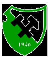 SV Grün-Weiss Stetten